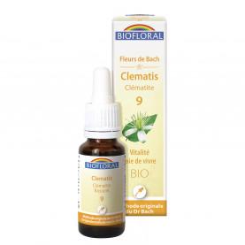 Flowers of Bach 09 Clematis - Clématite | Biofloral