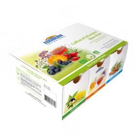 Coffret d' infusions 6 infus aux fleurs de Bach BIO - boitex60 sachets panachés 72g - x 60 g | Biofloral