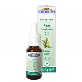 24 - Pine - Pin sylvestre - 20 ml | Biofloral