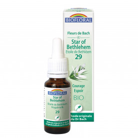 Flowers of Bach 29 Star of Bethlehem - Etoile de Bethléem | Biofloral