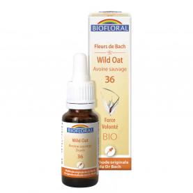 36 - Wild oat - Avoine sauvage - 20 ml   Biofloral